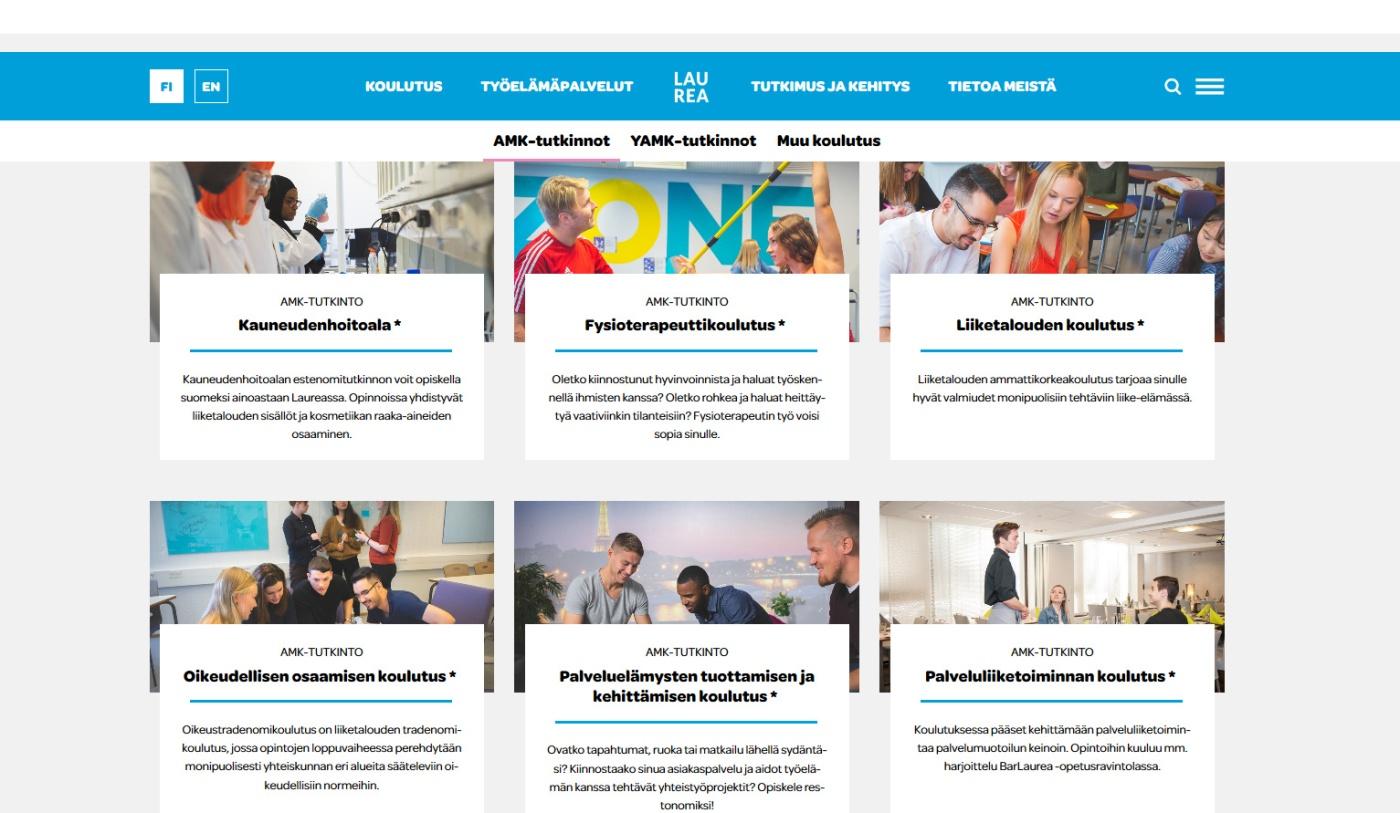 Näkymä Laurean ammattikorkeakoulututkintoihin verkkosivuilla.